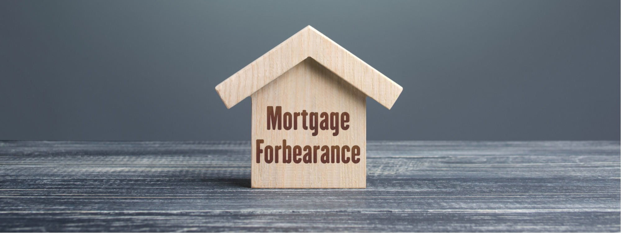 Is a Reverse Mortgage like a Permanent Forbearance?
